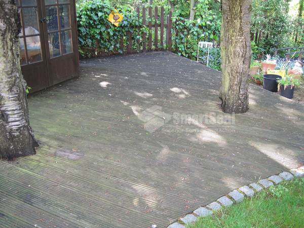 decking in a shaded area needing treatment